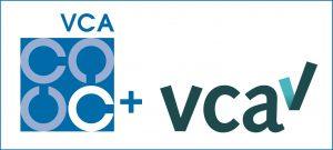 vca+ssvv[1]-1